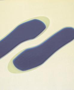Orthopaedic - Gel Insoles